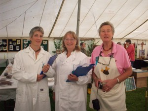 Carole and her stewards  are ready for the judging to commence