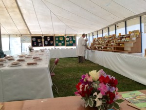 All set for the judging to start.